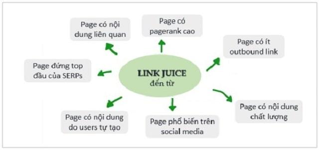 Link juice được công nhận từ nguồn nào