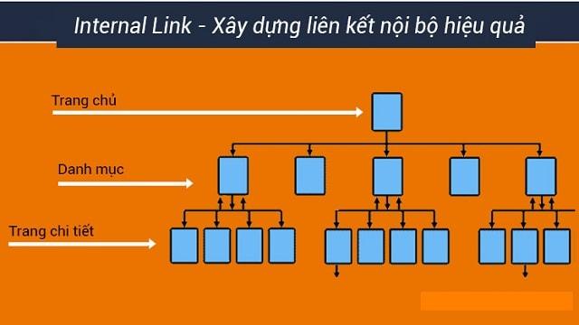 sức mạnh của internal link