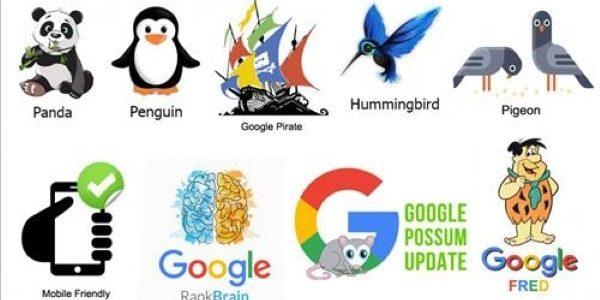 thuật toán Google là gì
