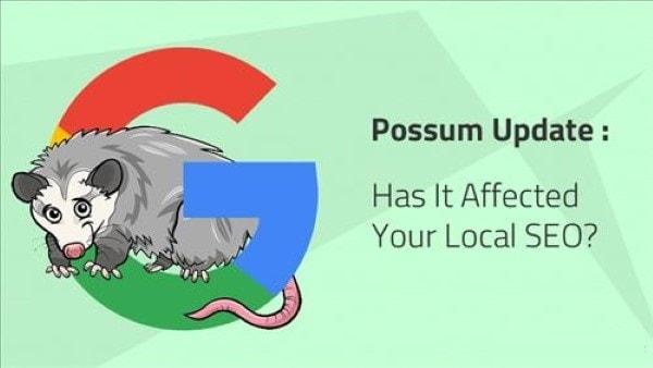 thuật toán Google Possum