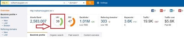 2 chỉ số URL Rating và Domain Rating t