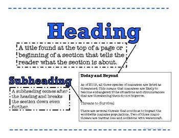 Yếu tố cốt lõi tạo nên Subheading trong câu hỏi subheading là gì