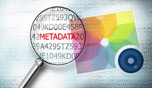Coppy các dữ liệu META trong câu hỏi seo audit là gì