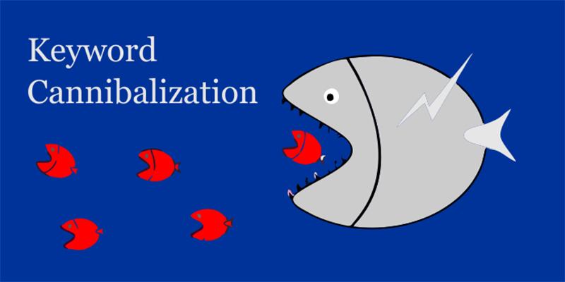 Keyword Cannibalization là gì